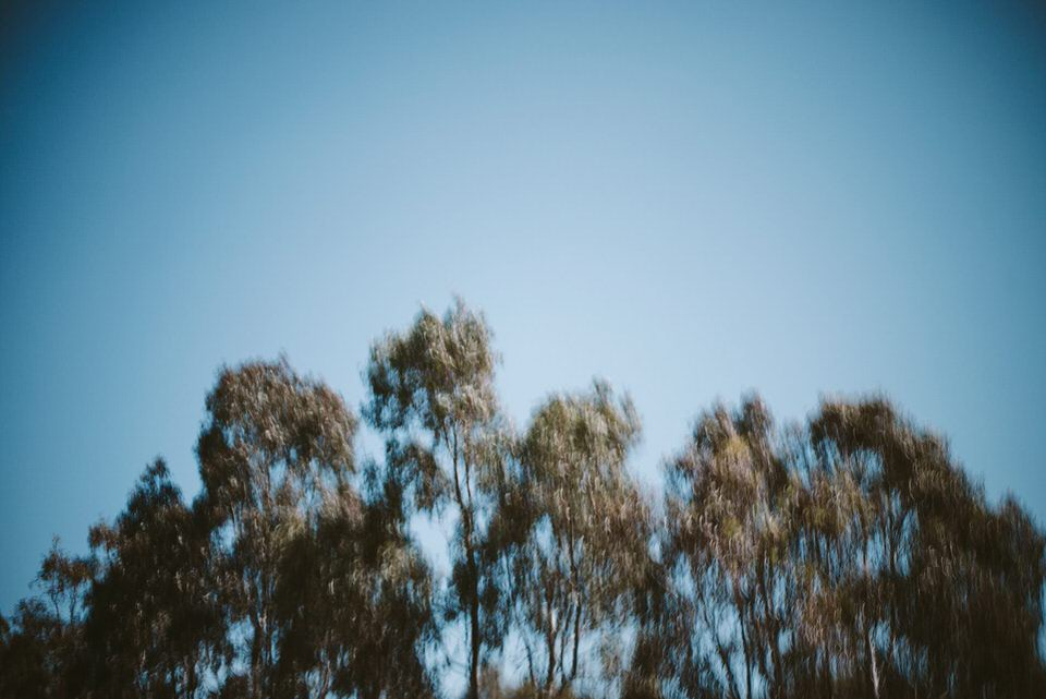 Fitzroyportraitphotographerkylelarson